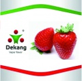 E - Liquid Dekang Strawberry 10ml - 6mg (Jahoda)